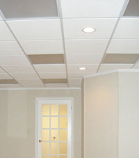 Basement Ceiling Tiles for a project we worked on in Grand Island, New York